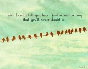 ... , feelings, i wish i could tell you, love, love you, never, quotes, s