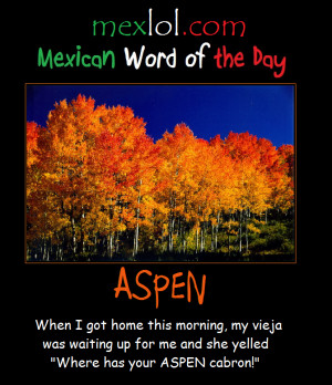 Mexican-Word-of-the-Day-Aspen.png