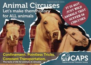 Circus Animal Abuse Quotes