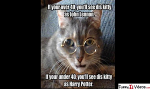 funny-animal-quotes-and-pictures-fun-friday-animal-meems-46234
