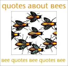 bee beekeeping books about bees beekeeping blogs bees in jewelry bees ...