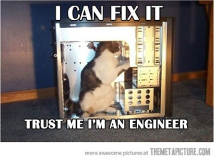 Funny photos funny cat fixing computer engineer