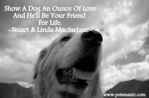 Show Your Dog A Love #dog #dogquotes