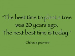 Quote_Chinese-Proverb_The-best-time-to-plant-a-tree-was-20-years-ago ...