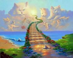 Cats -:Memory Quotes & pics - Rainbow Bridge