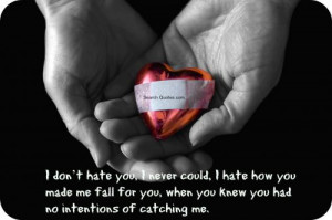 dont hate you, I never could, I hate how you made me fall for you ...