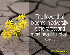 ... that blooms in adversity is the rarest and most beautiful of all
