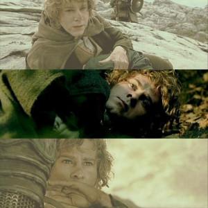 Meriadoc Brandybuck. AKA Merry (: