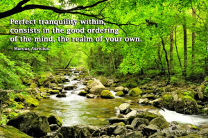 Perfect tranquility within, consists in the good ordering of the mind ...