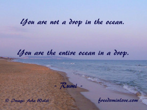 Funny Ocean Quotes You are the entire ocean in a