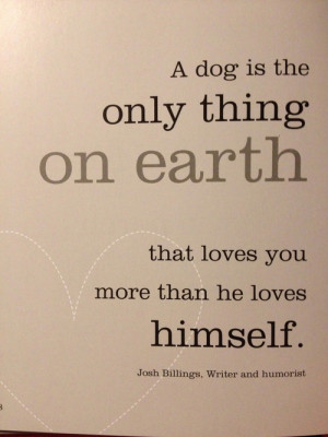 dogs #dog quotes #quotes #life with queso #wisdom #influence #pooches