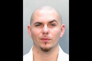 Pitbull ☆ pitbull rapper Photo