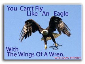 You can't fly like an eagle...