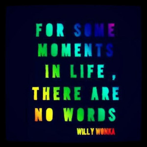 best-willy-wonka-quotes-for-some-moments-in-life-there-are-no-words