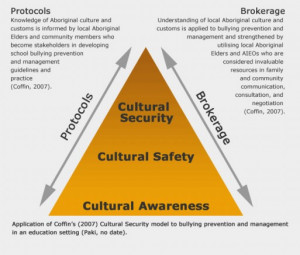 distinguishes between cultural awareness, cultural safety and cultural ...