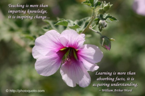 Sayings, Quotes: William Arthur Ward