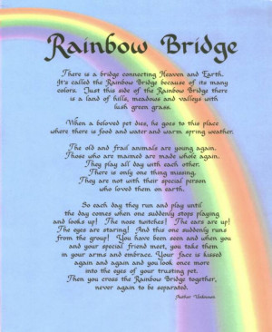RainbowBridge_op_655x800.jpg#Rainbow%20bridge%20655x800