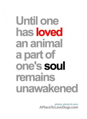 Until one has loved an animal, a part of one's soul remains ...
