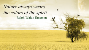 ralph waldo emersons essay nature Ralph waldo emerson (may 25, 1803 – april 27 he set out some of his important beliefs and the ideas he would later develop in his first published essay, nature.