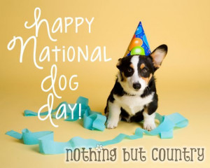 National Dog Day Pictures, Quotes, Messages - Photos