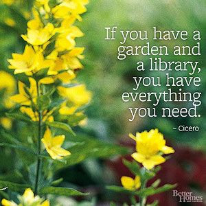 Garden Quotes; from dear B. So true, I was just weeding the flower ...