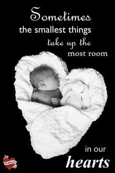... baby, quotes, heart, love parti photographi, pregnanc quot, newborn