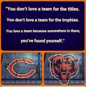 Chicago Sports, Bears Fans, Fans Forever, Bears Forever, Chitown ...