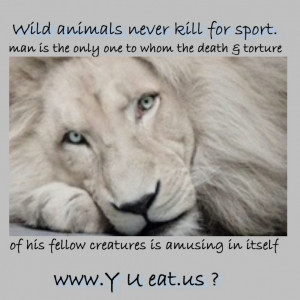 Funny Animal Quotes About Life: Wild Animal Does Not Kill The Animal ...