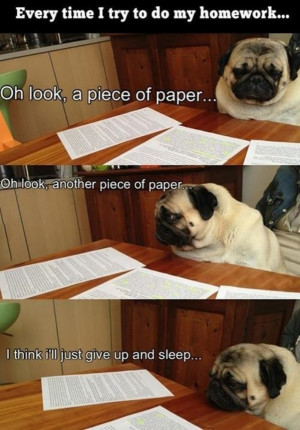 When_Doing_Homework_funny_picture
