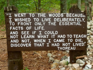 Replica of Thoreau's cabin at Walden Pond