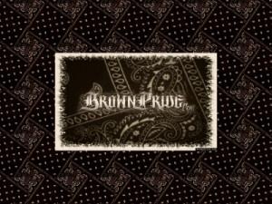 Brown Pride Poems Quotes 27k: brown pride poems
