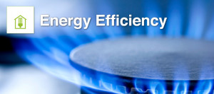 Energy Efficiency The Green