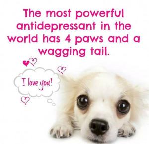 Most powerful antidepressant