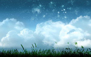 Shining Stars Above The Grassy Field wallpapers