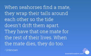 When seahorses find a mate, they wrap their tails around each other so ...
