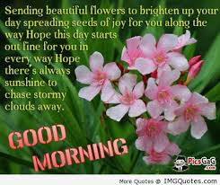 Sending Beautiful Flowers To Brighten Up Your Day Spreading Seeds Of ...