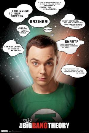 Big Bang Theory - Sheldon Sarcasm Quotes Poster