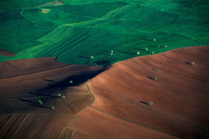Yann Arthus-Bertrand – Inspiration from Masters of Photography