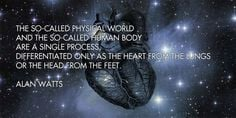 physical world and human body More