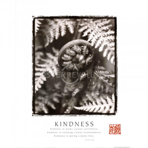 Tao Te Ching Kindness Ferns Motivational Poster
