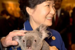 Park Geun-hye with koala
