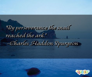 By perseverance the snail reached the ark. -Charles Haddon Spurgeon