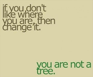 true quotes, you are not a tree - Dump A Day