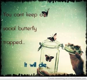 social_butterfly-284063.jpg?i
