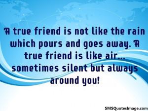 true-friend-is-not-like-the