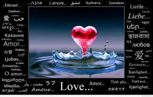 Most amazing love quote