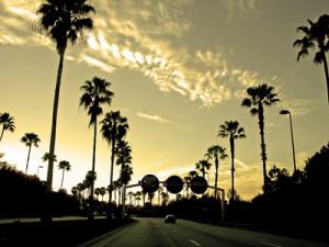 Cali Sunset   Stock Detail
