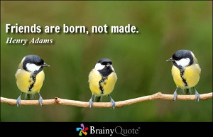 Friends are born, not made. - Henry Adams