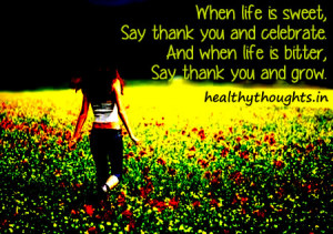 bitter-sweet-life-quotes