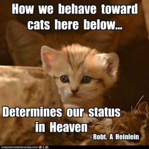 ... Cats Here Below, Determines Our Status In Heaven. - Robt. A Heinlein